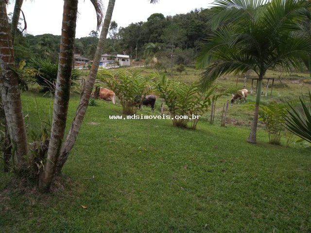 rural em Jacupiranga